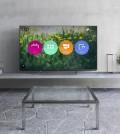 televizor panasonic 004